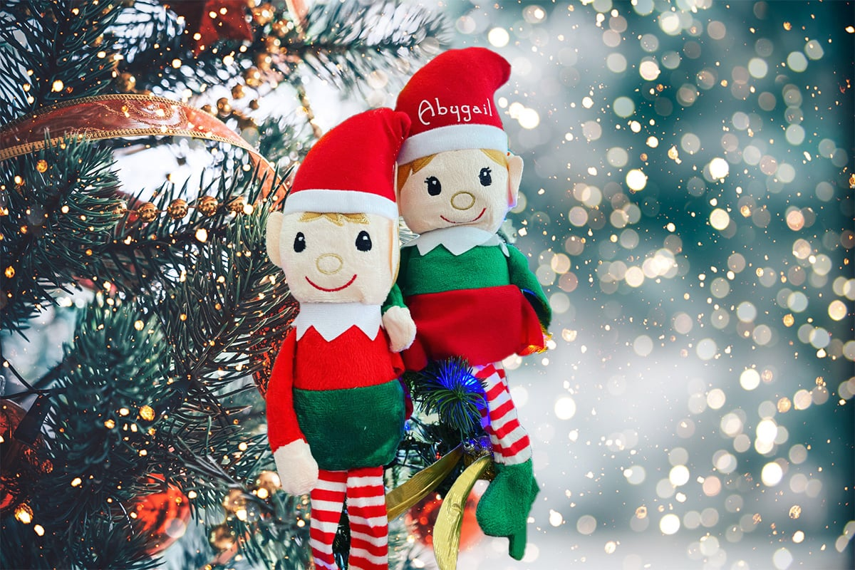 Customized Personalized Elf on the Shelf